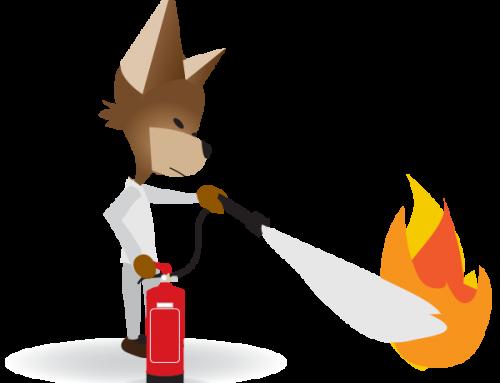 Recrutement – Incendie et Secours